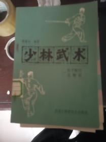 少林武术——连手短打、达磨杖(6.1日进书)