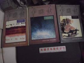 中国画 山水花鸟画部分 普通班,提高班,研究班   三本合售