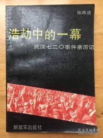 武汉时件:浩劫中的一幕,武汉七二0事件亲历记【原版书】