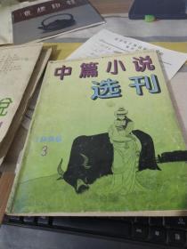 中篇小说选刊 1996 3