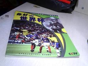 你好 世界杯  【2002年世界杯 】