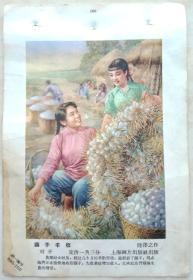 中国经典年画宣传画电影海报大展示------60年代年画系列----年画缩样之一----《茧子丰收》------32开----虒人荣誉珍藏