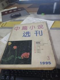 中篇小说选刊 1995 3