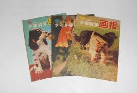 杂志--少年科学画报1984年第5,8,10期共3本