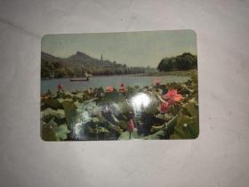 老卡片  湖上风荷