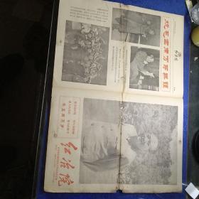 红治院(1966年)(文革小报)