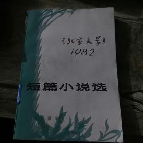 北京文学1982
