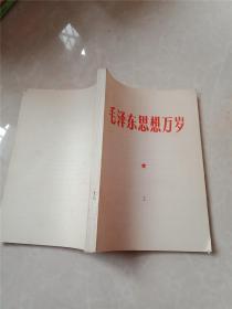 毛泽东思想万岁 北京
