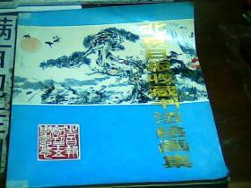 北京日报收藏书法绘画集