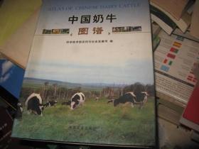 中国奶牛图谱