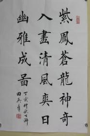 田英章书法 紫凤苍龙