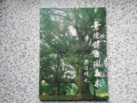 景德镇古树名木