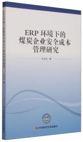 ERP环境下的煤炭企业安全成本管理研究