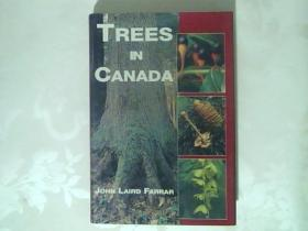 TREES IN CANADA :加拿大的树【铜板彩印】外文原版