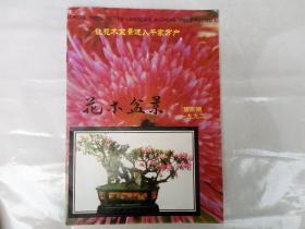 花木盆景 1992年第3期