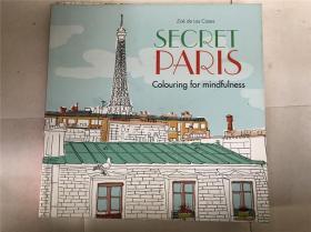 SECRET PARIS colouring for mindfulness  秘密巴黎 为正念着色