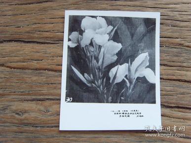 老照片:【※1981年,全国针织品供应交流会---手帕花样(30号)※】