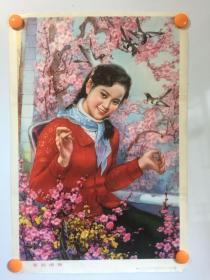 80年代精美年画——喜鹊闹梅