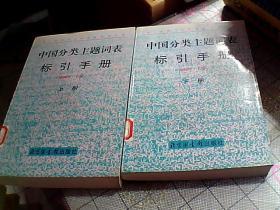 《中国分类主题词表》标引手册上下册