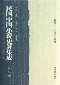 民国中国小说史著集成(32开精装 全十册 原箱装)