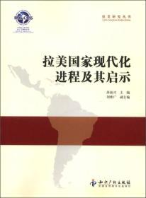 拉美研究丛书:拉美国家现代化进程及其启示