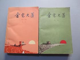 金光大道(全二册)