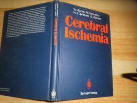 《Cerebral Ischemia脑缺血》见图