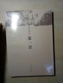 陈忠实:第一刀(2013年版)