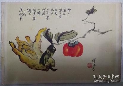 五十年代空白贺年片佛手柿子 李味青画