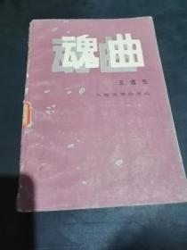 魂曲【落实知识分子政策小说】