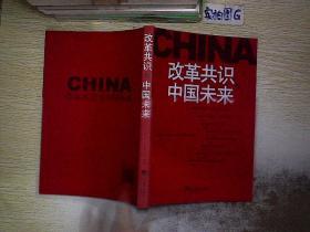 改革共识与中国未来