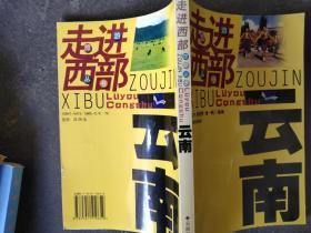 走进西部旅游丛书:云南