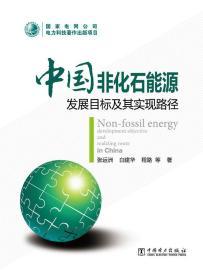 中国非化石能源发展目标及其实现路径