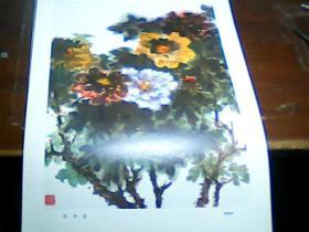 老版8开美术作品散页 1张 印刷品 牡丹花 谢稚柳