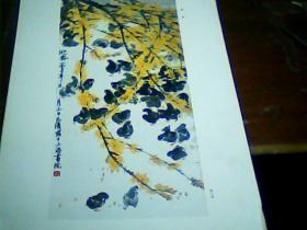 老版8开美术作品散页 1张 迎春(徐元清作)