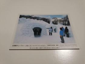 原版明信片 日本白熊亲子与雪屋 新片 六寸