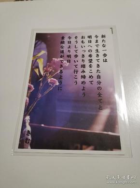 原版明信片 日本 祝贺用 新片 六寸 花卉