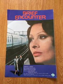 【日本电影资料12】英国电影《Brief Encounter(相见恨晚)》资料,理查德·伯顿/索菲亚·罗兰主演,70年代日本印刷