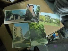 同济大学校景(明信片)4张