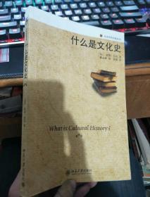 历史学的实践丛书---什么是文化史