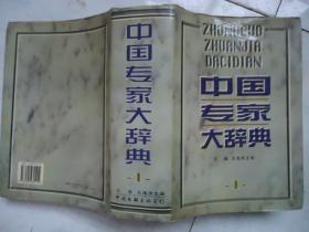 中国专家大辞典.1