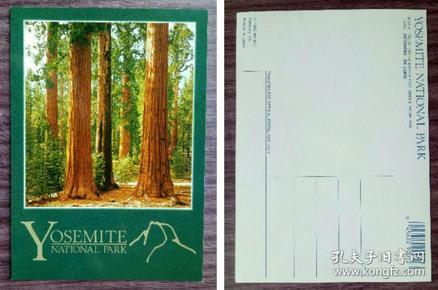 外国明信片,美国原版,约塞米蒂国家公园,品如图