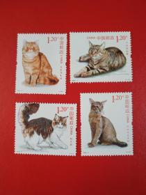 邮票:2013-----17  猫