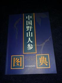 中国野山人参图典(16开 品好)