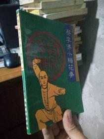 陈氏嫡传蔡李佛小梅花拳 1996年一版一印  品好干净 覆膜本