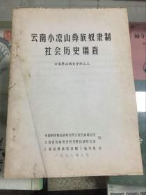 云南小凉山彝族奴隶制社会历史调查(云南彝族调查资料之三)