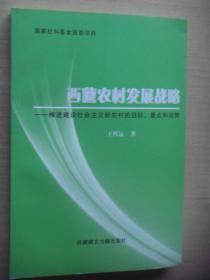 西藏农村发展战略