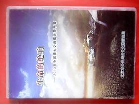 生命的绝响——2013年全国重大交通事故警示录(单碟)