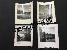 早期昆明翠湖风光建筑经典照片4张合售,花边纸品好少见