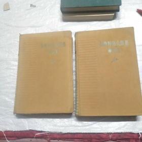 奥斯特洛夫斯基两卷集
